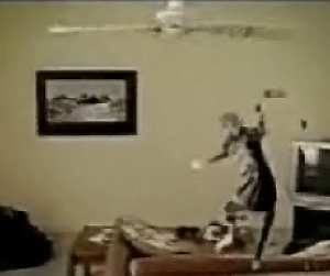 Video of the week cat tossed around by ceiling fan dvorak news blog click on image to view video mozeypictures Choice Image